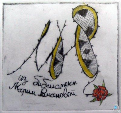 """""""Из библиотеки Марии Романовой"""", Сальникова Ксения, 14 лет"""