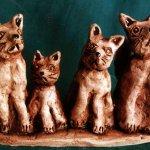 Лябчук Диана, 12лет, Бездомные кошки